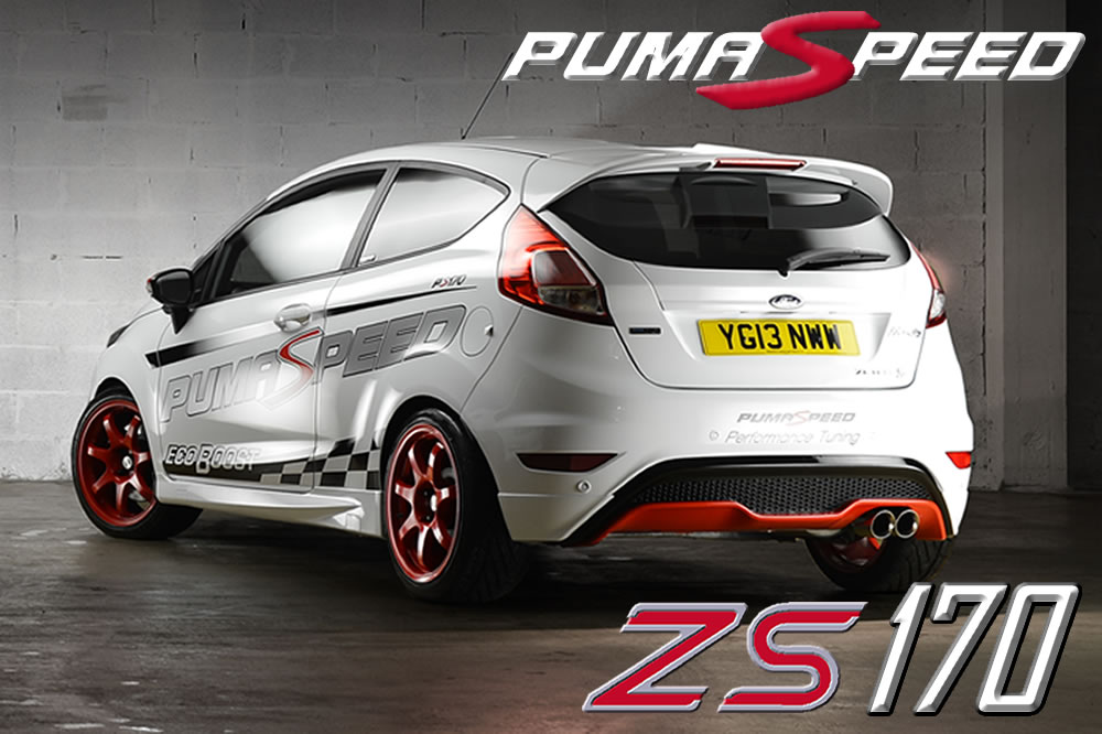 http://www.pumaspeed.co.uk/saved/Fiesta_1.0_ecoboost_zs170_rear_shot0.jpg