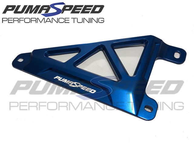 Pumaspeed Fiesta Mk8 Battery Tie Down