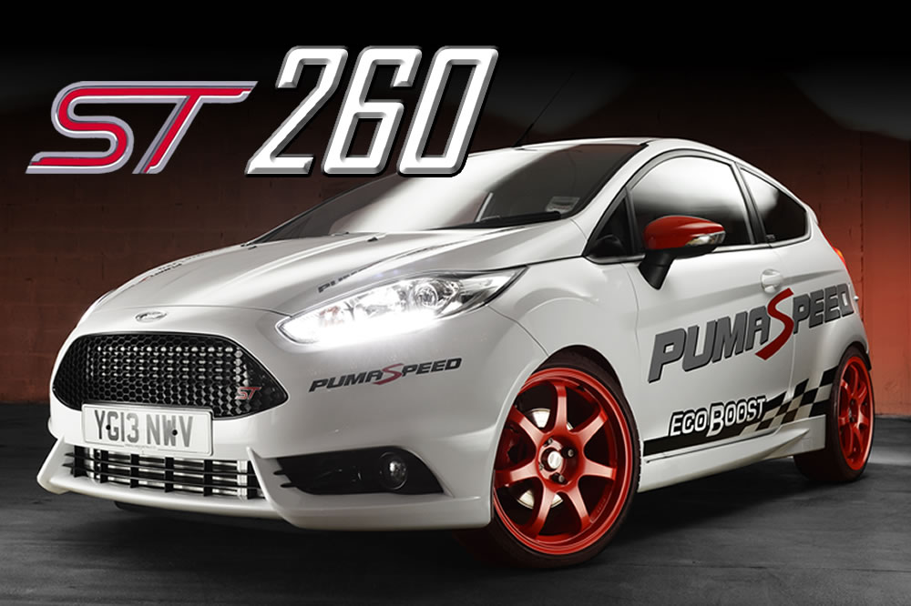 fiesta zetec s puma conversion guide