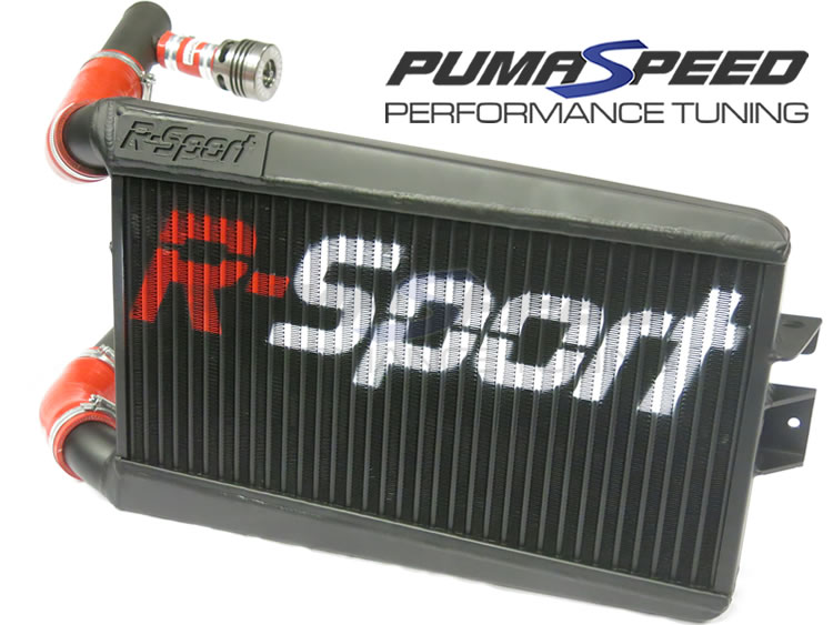 http://www.pumaspeed.co.uk/saved/Ford_fiesta_EcoBoost_1.0_turbo_black_intercooler_r-sport.jpg