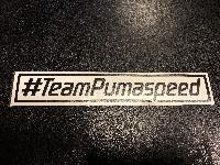 #TeamPumaspeed - Sticker 95mm x 32mm