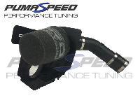 Fiesta ST Mk8 Pro Alloy Induction Kit