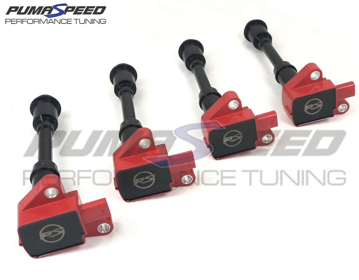 Ford Fiesta ST180 1.6 EcoBoost Pumaspeed Racing Coil Pack
