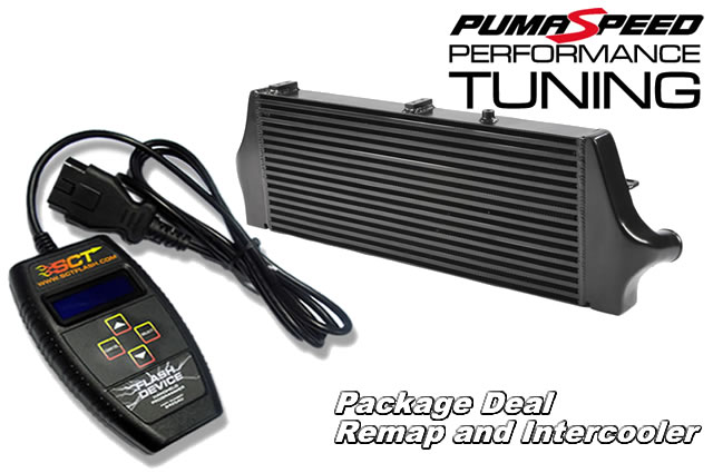Bargain priced power tuning package deal for all ST focus 225