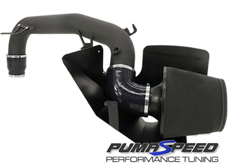 Pumaspeed R-Sport Focus RS Mk3 Cold Air Induction System