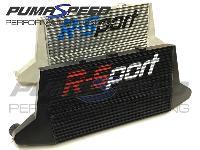 R-Sport Pro 450 Intercooler Fiesta ST180