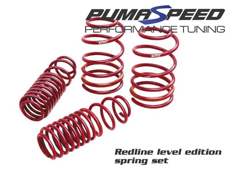 http://www.pumaspeed.co.uk/saved/Redline_Level_edition_Fiesta_Mk7_ecoBoost_Springs.jpg