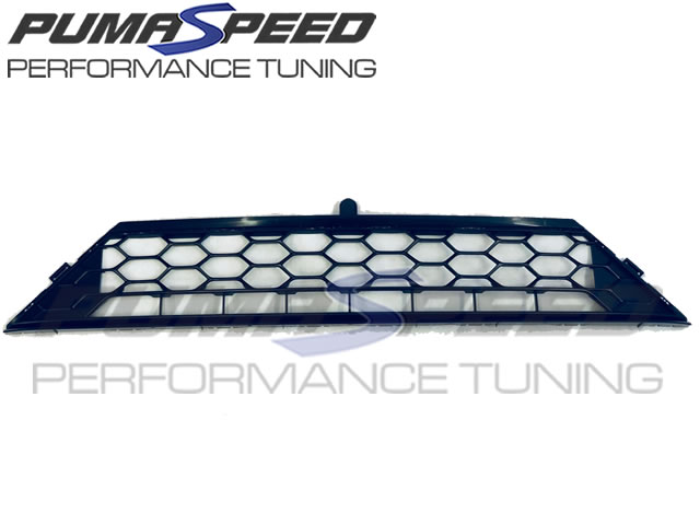 Ford Fiesta ST Mk8 Front Lower Grille